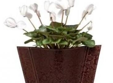 Vasos com revestimento em couro, bonito e versátil