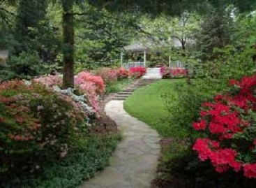 Paisagismo, Projetando um jardim misto