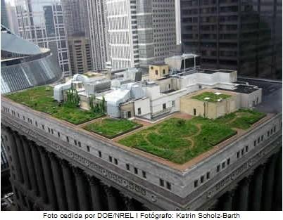 Telhados e Coberturas: O que é um telhado ecológico?