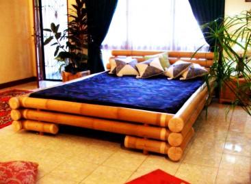 O charme rústico do Bambu