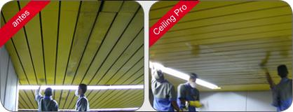 celling-pro