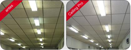 celling-pro-3