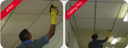 celling-pro-2