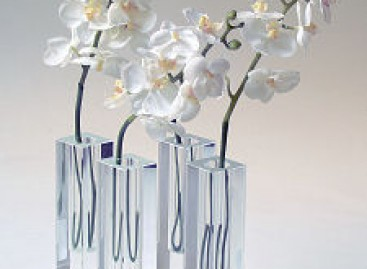 Vasos e o charme da Decoração com vidro