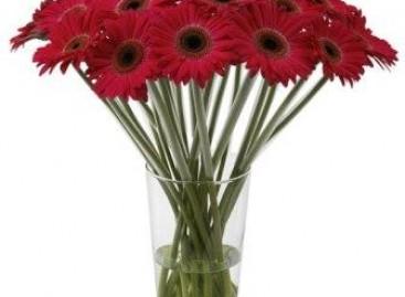 Deixe a casa mais alegre com as flores em vaso