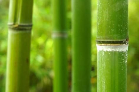 Aprenda a Fazer a Textura com Efeito Bambu