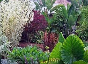 Estilos de Jardim; Escolha o Seu