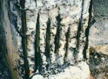 Problemas em Pilares, Vigas e Lajes