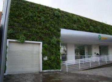 Ecoparedes: solução ecológica para sua obra