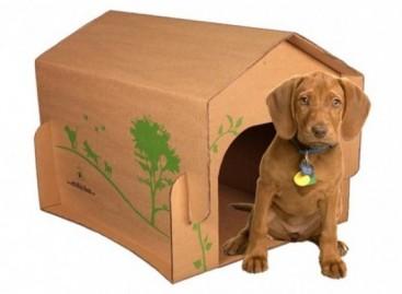 Casinha ecológica para o seu pet