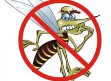 Evite o mosquito da dengue nas construções
