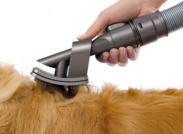 Aspirador bom pra cachorro