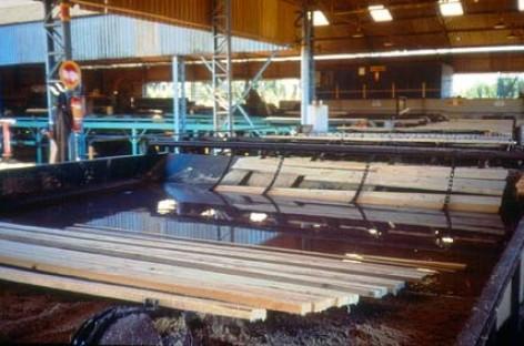 Mais qualidade em madeira de paletes