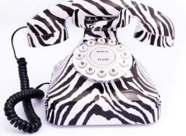 Zebra no telefone