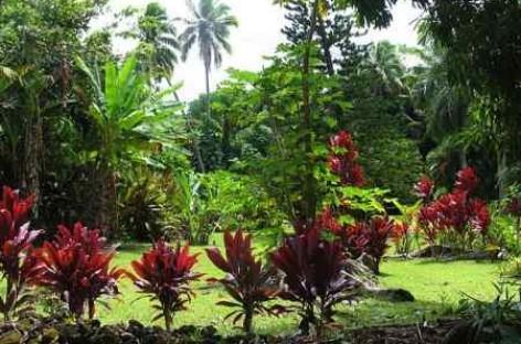 Estilos de Jardim: Tropical