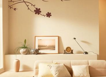 Cuidados para aplicação de adesivos de parede