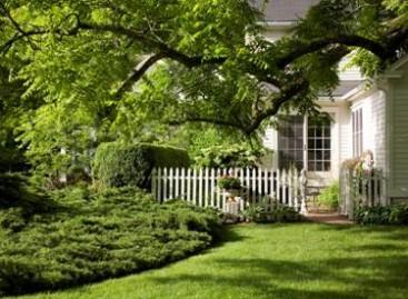 Jardins bonitos valorizam a propriedade