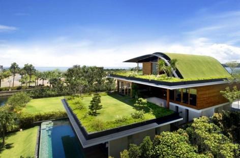 O que é Telhado verde?