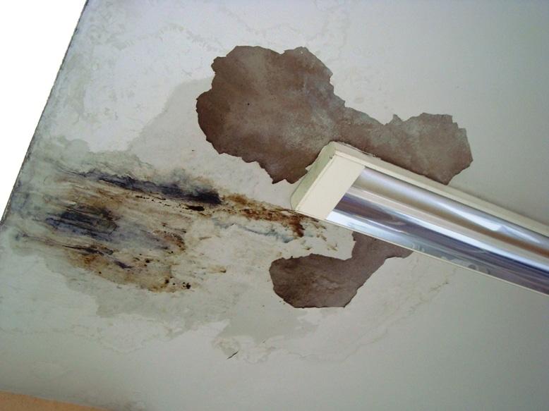 A infiltração na laje pode ocasionar graves problemas à edificação. (Foto: Divulgação)
