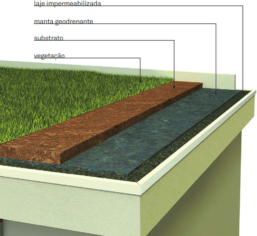 Telhado verde, como fazer? (Foto: Divulgação)